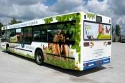 autobus6